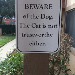 Pets Can't Be Trusted Here. [Photo]