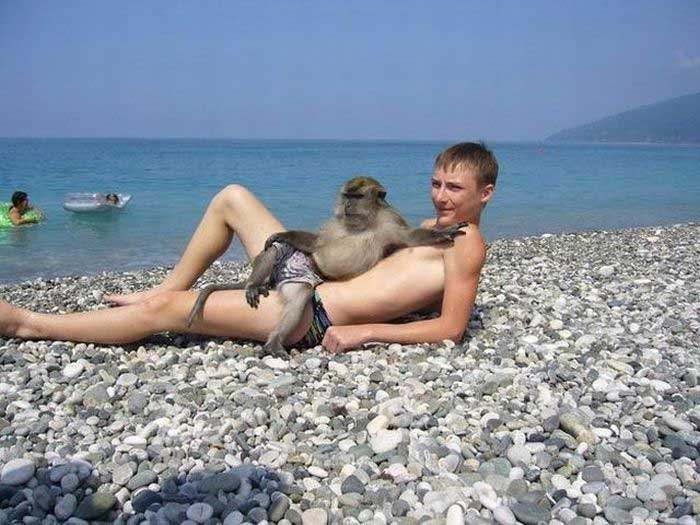 One man and his monkey