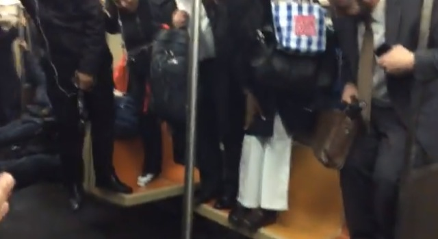 rat on the subway