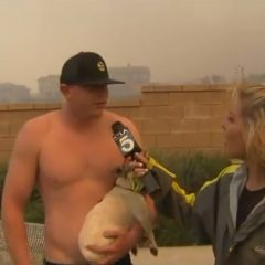 Shirtless Bro Asks Reporter Out During Wildfire