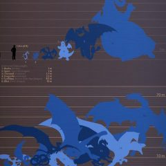 Here's a Dragon Size Chart