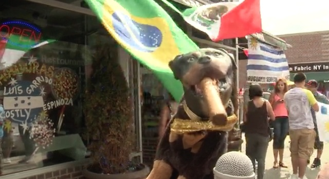 Triumph the Insult Comic Dog on the World Cup